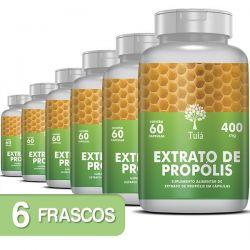 Extrato de Própolis - Kit 6 Frascos